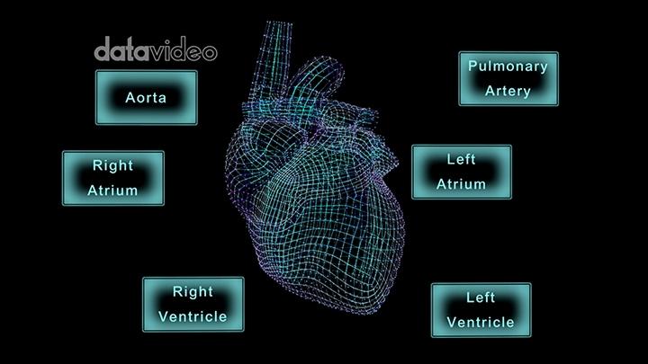 【TVS-3000_AR】Heart-2