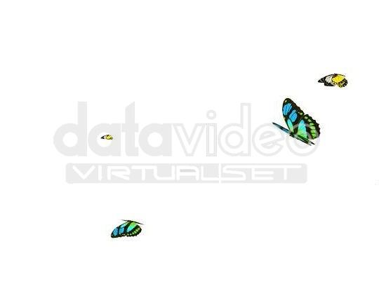 Butterfly_02