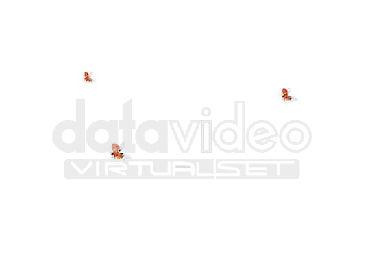 Ladybug_01